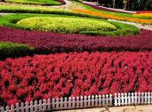 Un jardin formel Images libres de droits