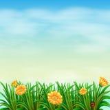 Un jardin sous le ciel Image stock