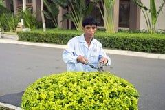 Un jardinero Bush imagen de archivo