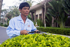 Un jardinero Bush imagenes de archivo