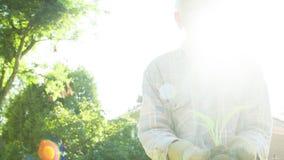 Un jardinero mayor que sostiene un lanzamiento joven en sus manos almacen de metraje de vídeo