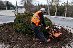 Un jardinero que trabaja en suelo foto de archivo