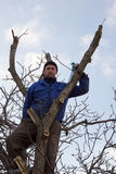 Un jardinier dans la veste bleue se reposant dans un arbre Photos stock