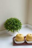 Un jarro con la manzana y la planta decorativa Foto de archivo