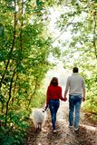 Un jeune ajouter à un chien marchant le long du parc d'automne elle est dans un chandail rouge qu'il est dans le blanc avec un ch Photo libre de droits