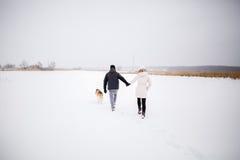 Un jeune couple enceinte marchant dans les bois avec le chien de traîneau rouge de chien Photos libres de droits
