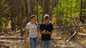 Un jeune couple marche dans une forêt de pin sur les roches en pierre un jour ensoleillé lumineux clips vidéos