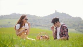 Un jeune couple se reposant sur un pré vert clair et ayant un pique-nique avec du vin banque de vidéos