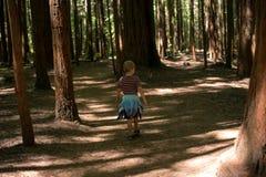 Un jeune explorateur de forêt Photos stock