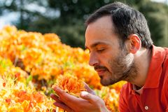 Un jeune homme appréciant l'arome de la fleur de ressort du yello lumineux image stock