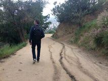 Un jeune homme marche dans Griffith Park sur la LA photographie stock