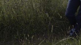 Un jeune homme marche le long d'un chemin forestier banque de vidéos