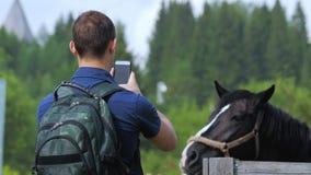 Un jeune homme tire un cheval à un téléphone portable à une ferme ou une foire ou un festival de village clips vidéos