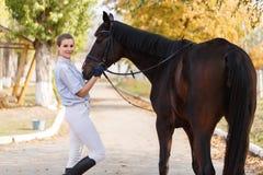 Un jinete femenino se coloca cerca de un caballo oscuro y sostiene un arnés outdoors Fotografía de archivo