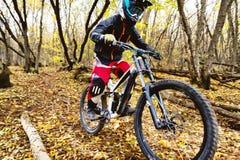 Un jinete joven que conduce una bici de montaña monta a la velocidad cuesta abajo en el bosque del otoño Imágenes de archivo libres de regalías