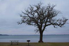 Un jour au lac Image libre de droits