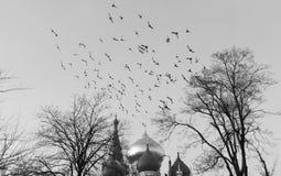 Un jour brumeux à Odessa Images libres de droits