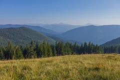 Un jour d'été ensoleillé, la vue du plateau à la forêt et des montagnes Ciel bleu, un bon nombre d'herbe verte et arbres Photo stock