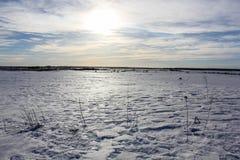 Un jour d'hiver dans la région de Léningrad images stock