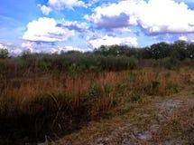Un jour dans la prairie de Paynes Photos libres de droits