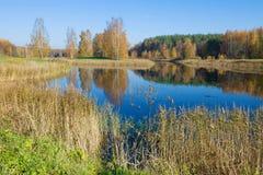 Un jour ensoleillé d'octobre sur l'étang de Hannibal Petrovskoe dans le Pushkinskie sanglant Russie images libres de droits