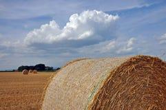 Un jour ensoleillé dans le domaine avec les balles rondes de paille de blé Photo libre de droits