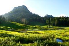 Un jour ensoleillé dans les montagnes sur le lac Tipsoo Photo libre de droits