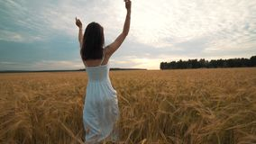 Un jour ensoleillé, une femme marche le long d'un champ de blé avec une robe blanche sur un mode de vie de concept de fond de nat clips vidéos