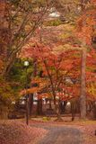 Un jour moderne Narnia, Nikko Japon images stock