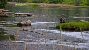 Un jour pluvieux à la lagune Images libres de droits