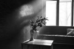 Un juego de sombras imágenes de archivo libres de regalías