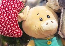 Un juguete suave de un cochinillo en ropa de la turquesa fotos de archivo libres de regalías