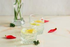 Un jus de fruit régénérateur avec l'orange de menthe et de citron Photographie stock libre de droits