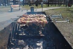 Un kebab del barbecue è fritto su un addetto alla brasatura nel parco Fotografia Stock Libera da Diritti