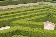 Un labirinto Immagine Stock Libera da Diritti