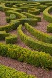 Un labirinto Immagini Stock