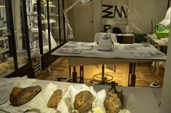 Un laboratoire pour le traitement des d?couvertes antiques photos libres de droits
