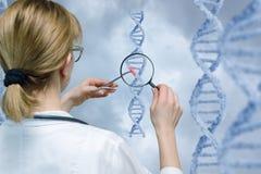 Un laboratorian regarde le modèle d'ADN par la loupe photos stock