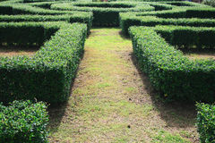 Un labyrinthe de jardin Photos stock
