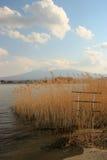 Un lac avec des roseaux avec une montagne Photographie stock libre de droits