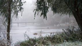 Un lac avec des roseaux en gel et brouillard Photos stock