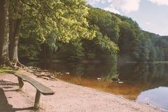 Un lac avec un vieux banc en bois au milieu d'une forêt riche Images stock