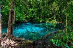 Un lac bleu pittoresque dans la jungle de la Thaïlande Photographie stock