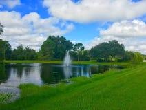 Un lac clair à Tampa Images libres de droits