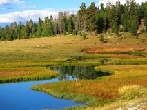 Un lac dans Dixie National Forest Image libre de droits