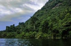 Un lac dans la jungle de la Thaïlande Photographie stock