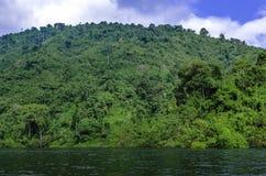 Un lac dans la jungle de la Thaïlande Photos libres de droits