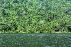 Un lac dans la jungle de la Thaïlande Image stock