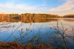 Un lac dans la for?t photos libres de droits