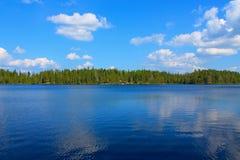 Un lac dans un forrest Photographie stock libre de droits